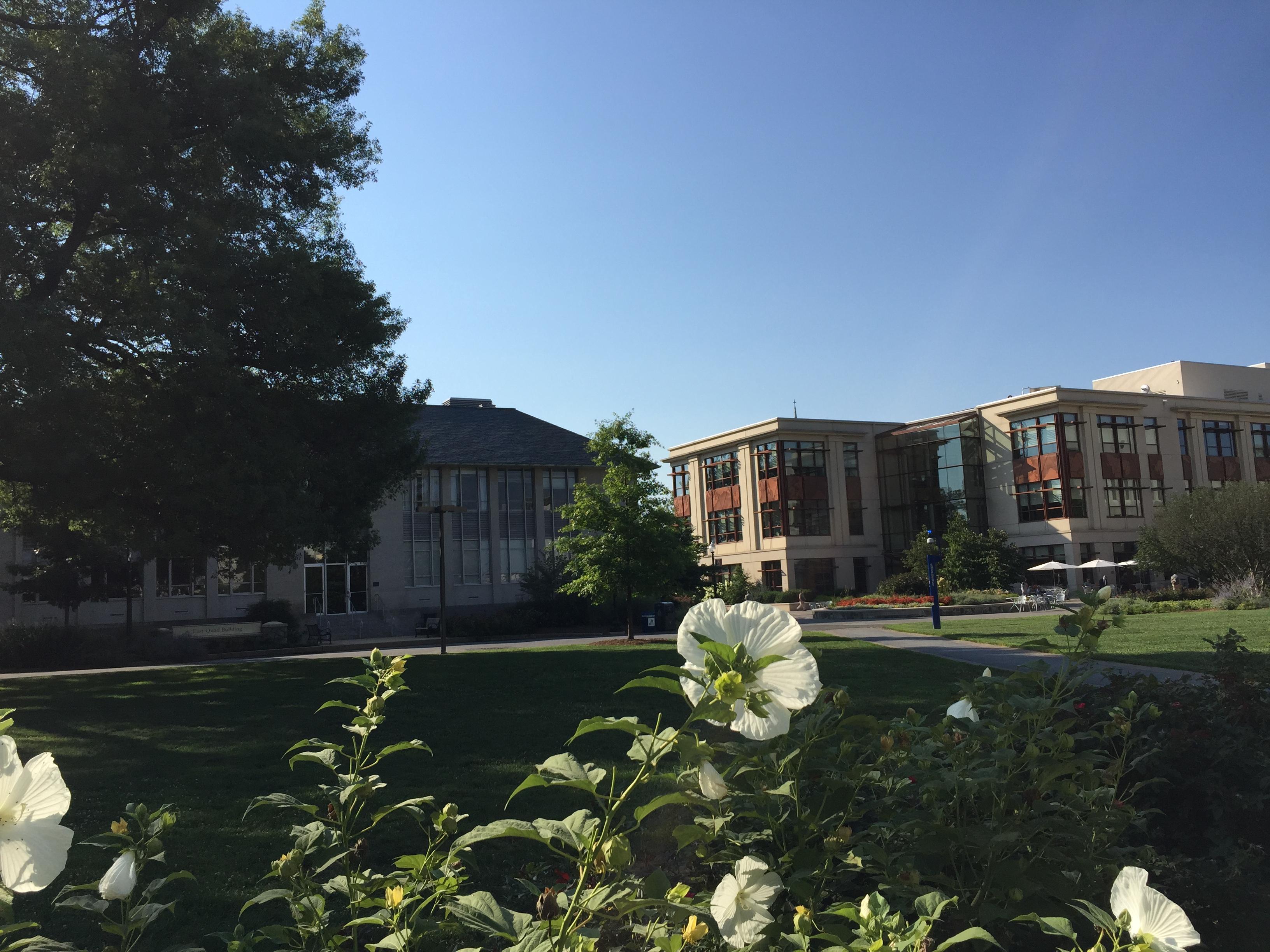 AU Campus 2