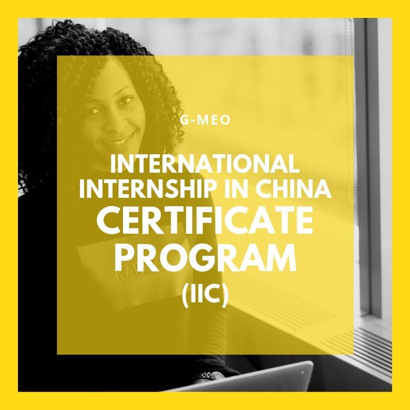 IIC Internship Certificate Program