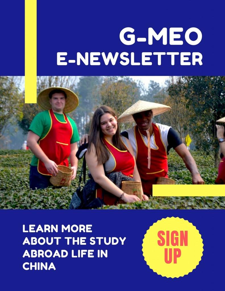 G-MEO E-newsletter Poster